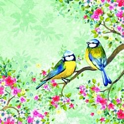 Bird Watching Design Three Ply Paper Napkins (20)