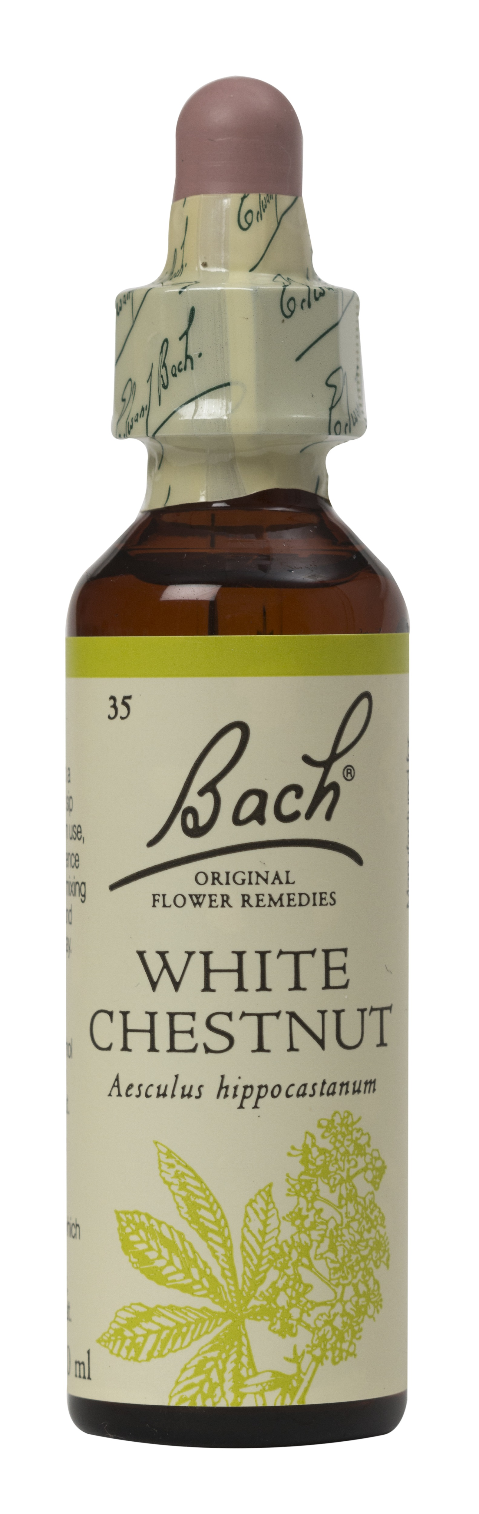 The Tree House Shop Bach White Chestnut Flower Remedy 20ml